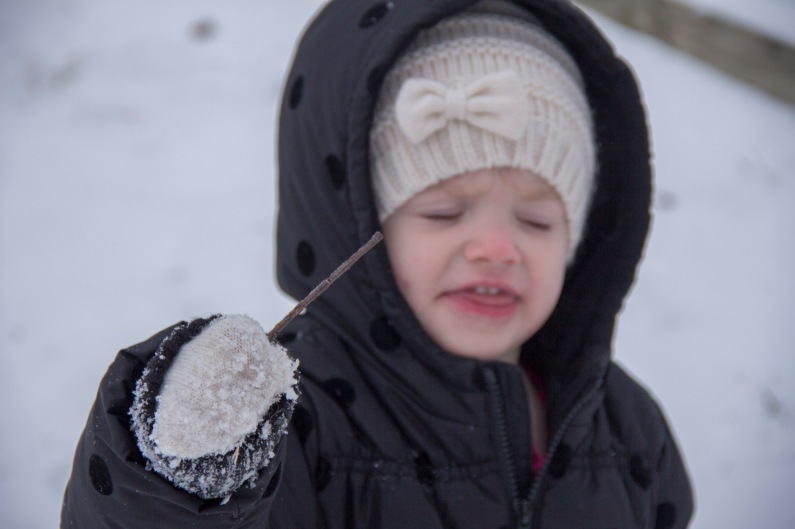 Snow fist
